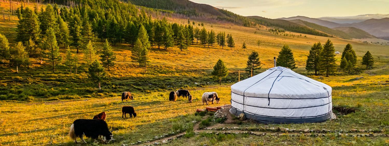 mongolų prekybos sistema)
